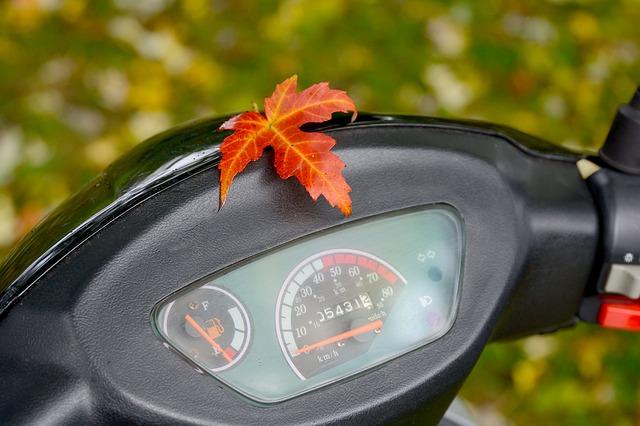 assurance scooter permis AM